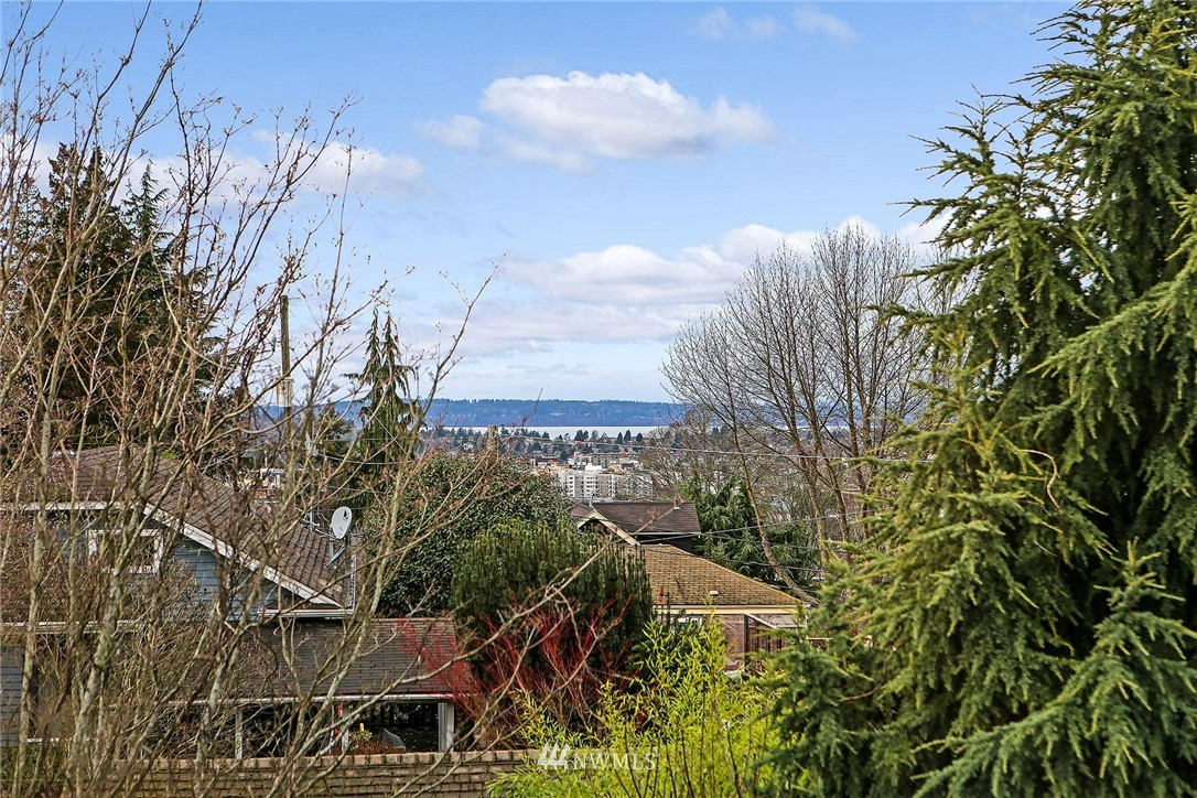 Sold Property   116 N 54th Street Seattle, WA 98103 10