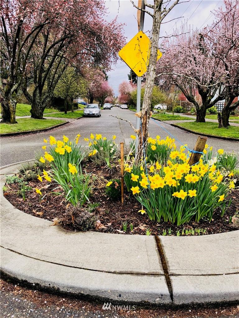 Sold Property | 6845 23rd Avenue NE Seattle, WA 98115 16