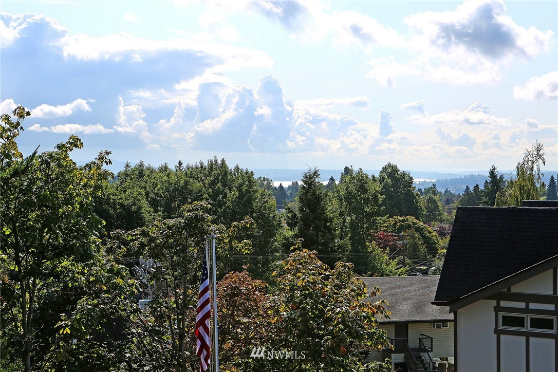Sold Property   8246 17th Avenue NE Seattle, WA 98115 24