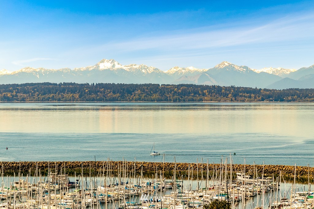 Sold Property | 6815 35th Avenue NW Seattle, WA 98117 8