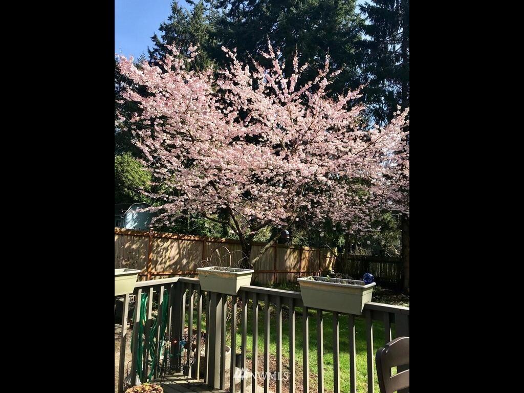 Sold Property | 9306 217th Street SW Edmonds, WA 98020 21