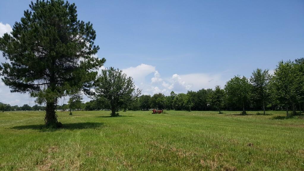 Pending | 3525 Katy Hockley Road Katy, Texas 77493 0
