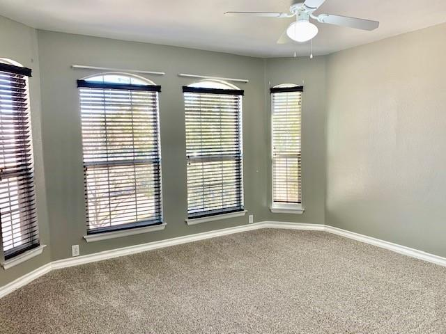 Closed | 2805 Red Ivy Cove Pflugerville, TX 78660 20