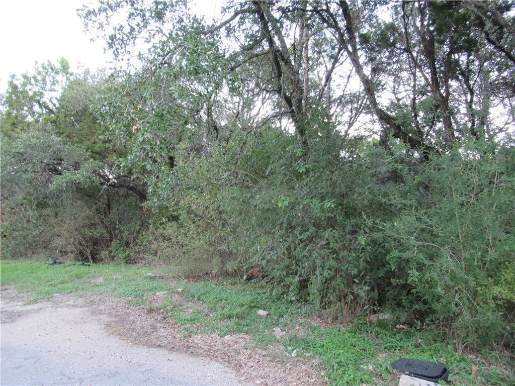 Closed | 11407 Bertram Street Jonestown, TX 78645 3
