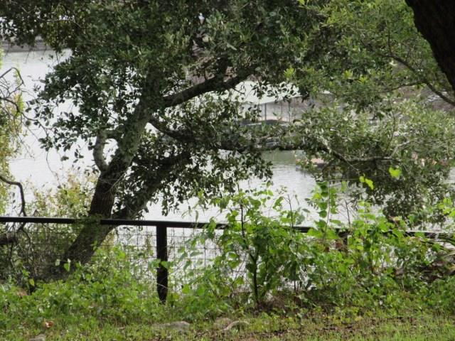 Closed | 11303 Lakeside Drive Jonestown, TX 78645 18
