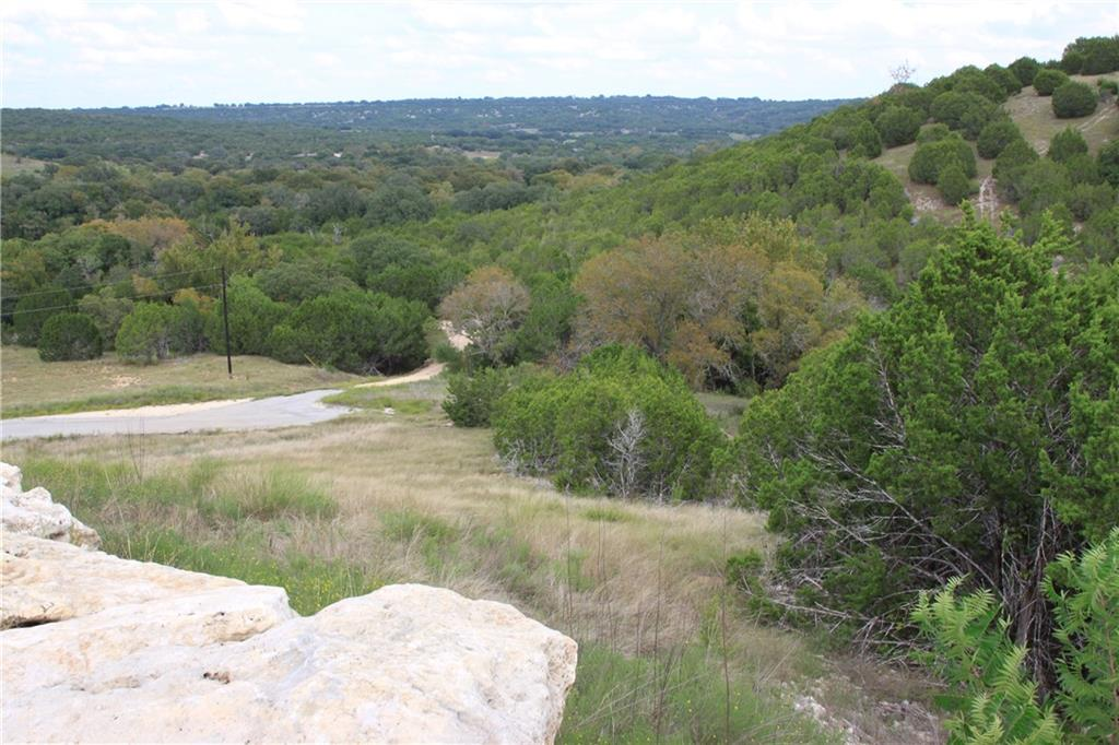 Closed | Saddle Ridge Drive Bertram, TX 78605 0