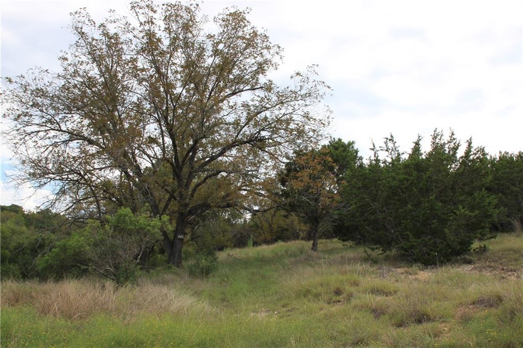 Closed | Saddle Ridge Drive Bertram, TX 78605 7