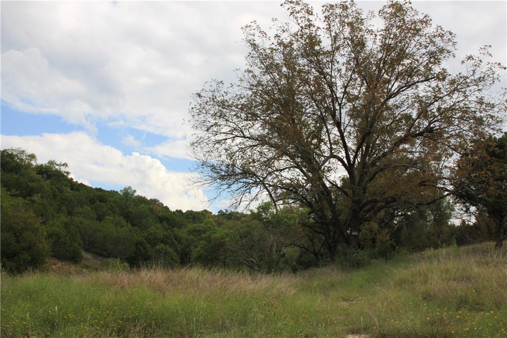 Closed | Saddle Ridge Drive Bertram, TX 78605 10