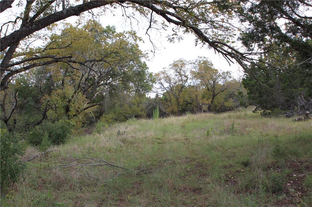 Closed | Saddle Ridge Drive Bertram, TX 78605 11