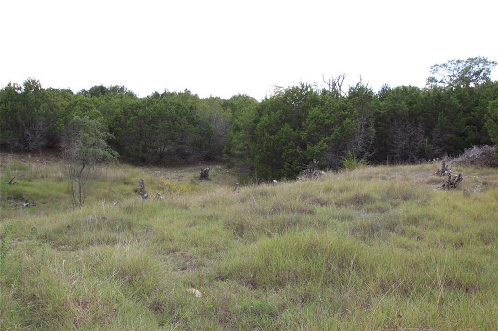 Closed | Saddle Ridge Drive Bertram, TX 78605 15