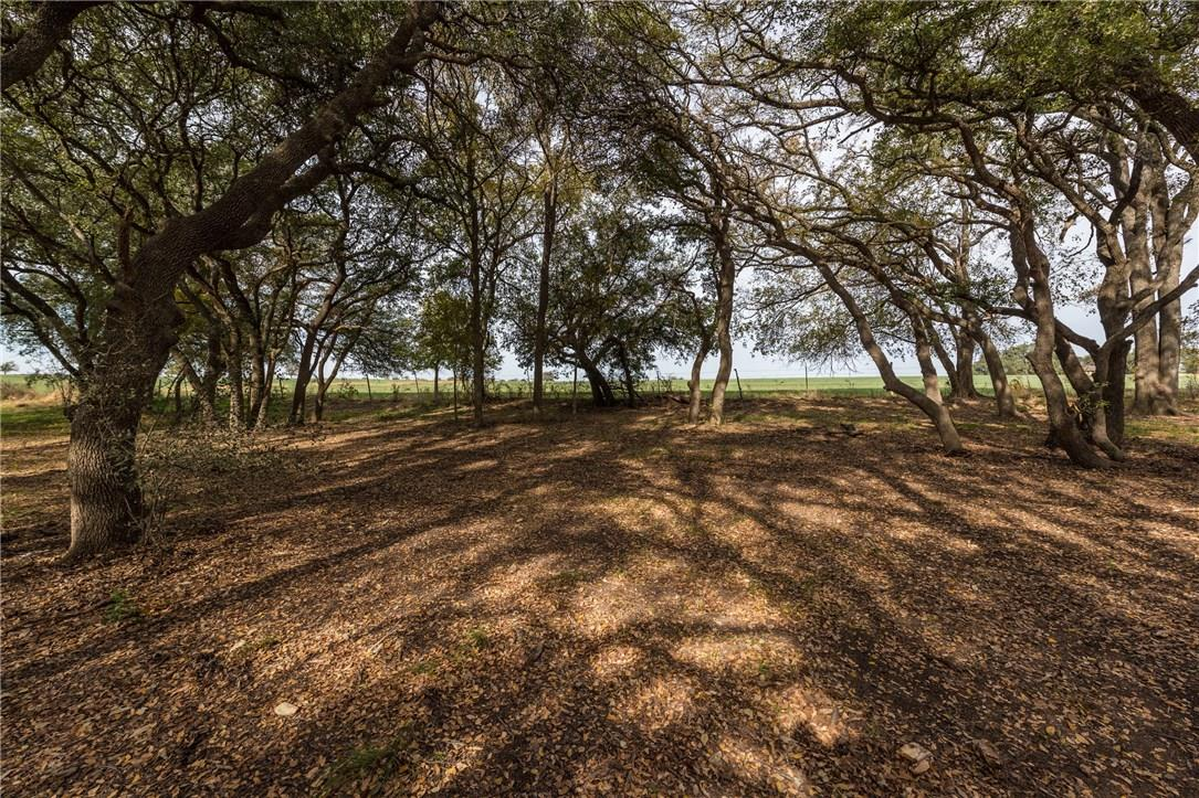 Closed | 1515 County Road 106 Georgetown, TX 78626 32