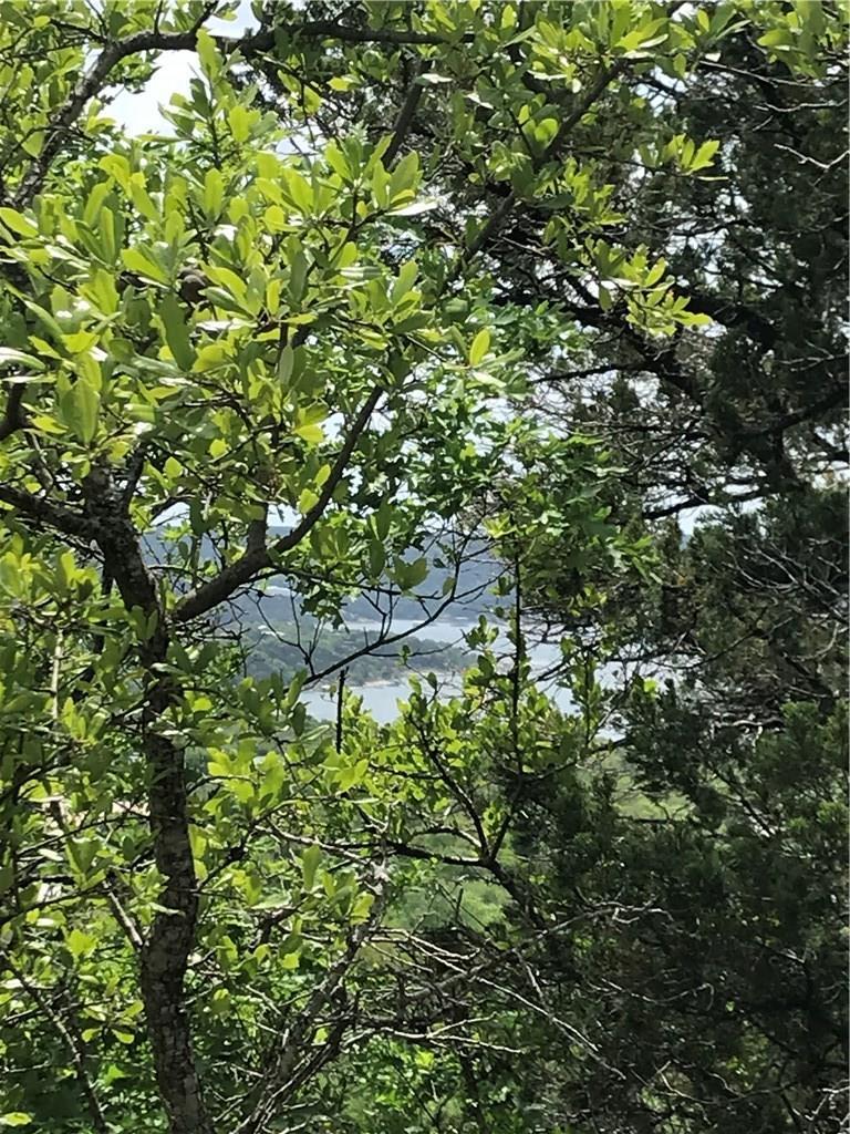 Closed | 10927 Panoramic View Jonestown, TX 78645 2