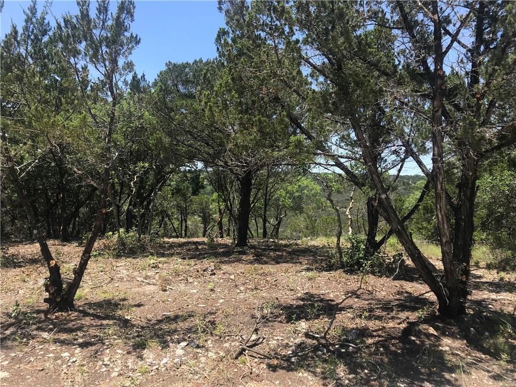 Closed | 10938 Panoramic View Jonestown, TX 78645 4