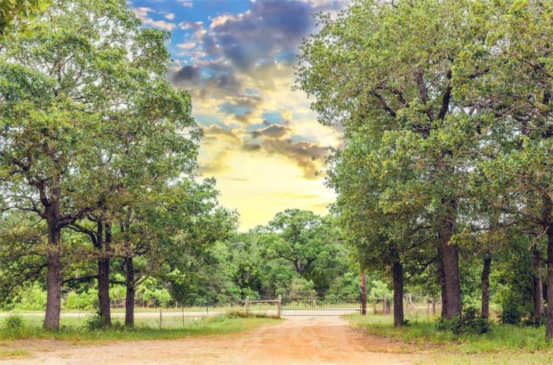 Closed   1630 Wood Haven Drive Waelder, TX 78959 4
