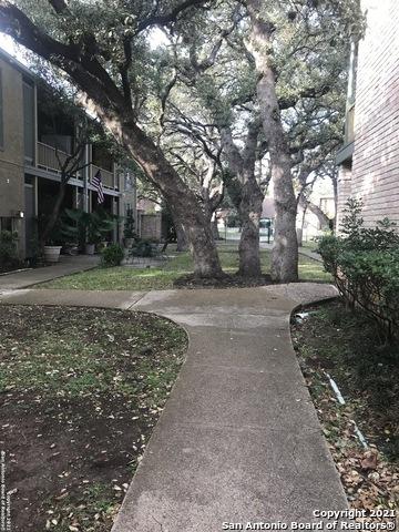 Active   3678 HIDDEN DR San Antonio, TX 78217 25