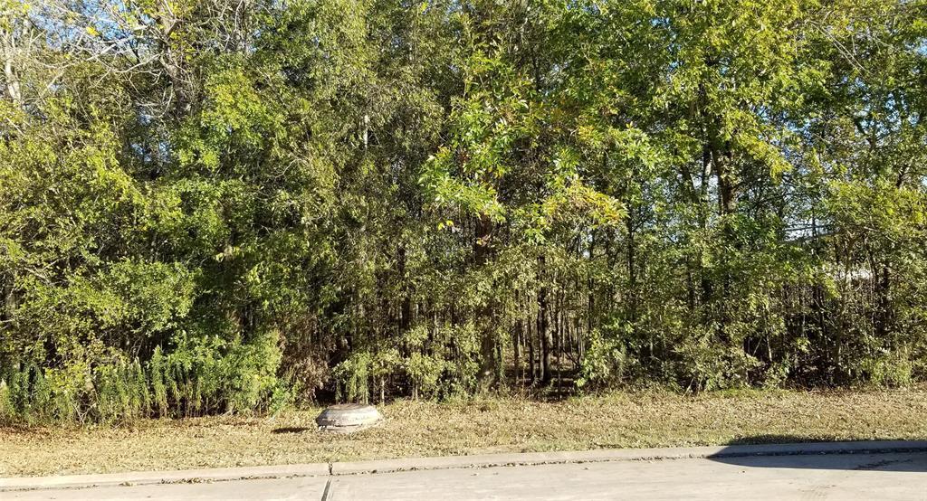 Active | 1206 Grand Estates Drive Richmond, Texas 77469 1