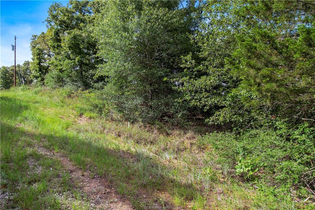 Closed   51 Trailride Hilltop Lakes, TX 77871 4