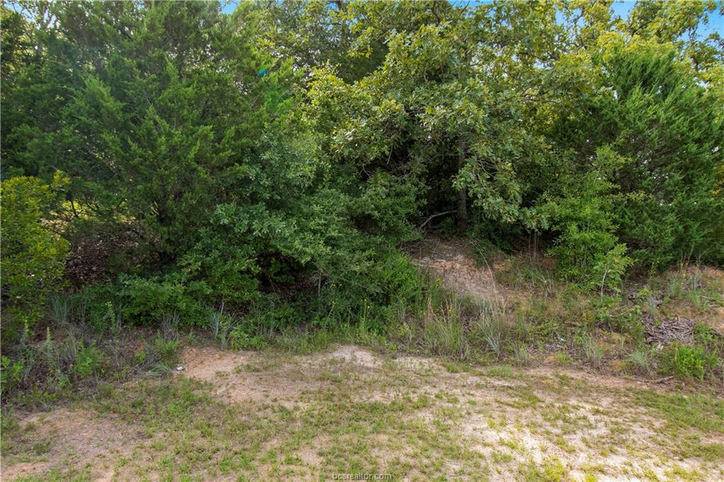 Closed | 51 Trailride Hilltop Lakes, TX 77871 5