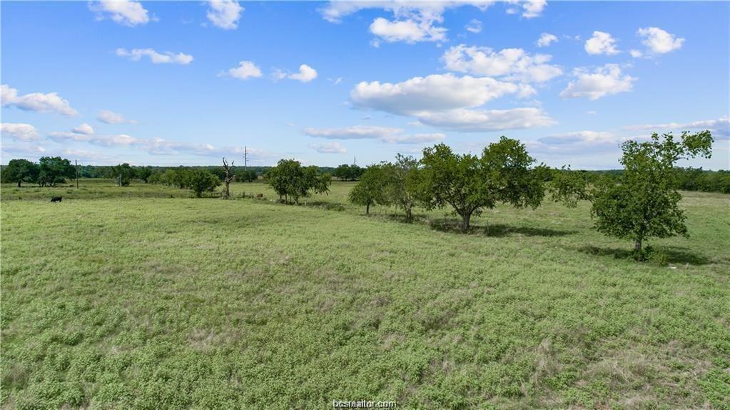Pending | 12124 County Road 175 Iola, TX 77861 7