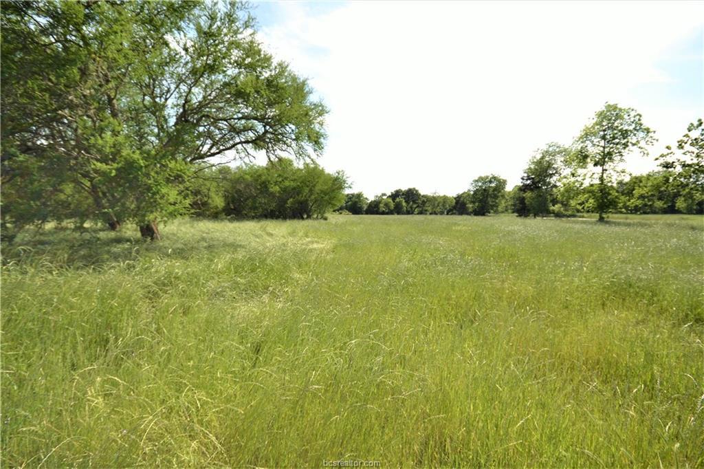 Closed | 13083 E OSR Road #Lot 22 (6.47 Acres) Wheelock, TX 77859 2