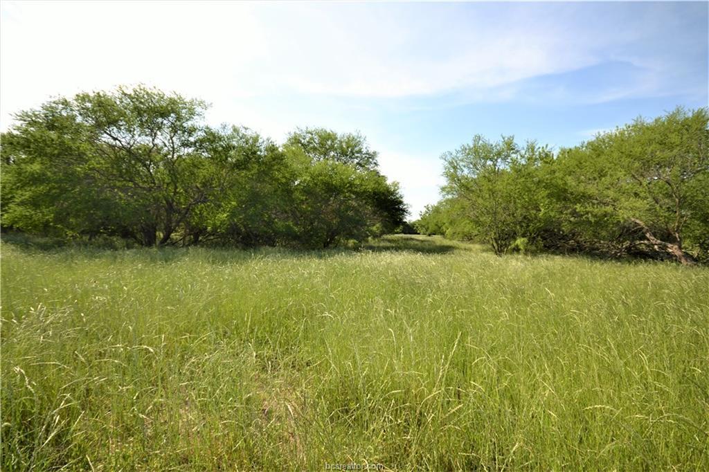 Closed | 13083 E OSR Road #Lot 22 (6.47 Acres) Wheelock, TX 77859 3