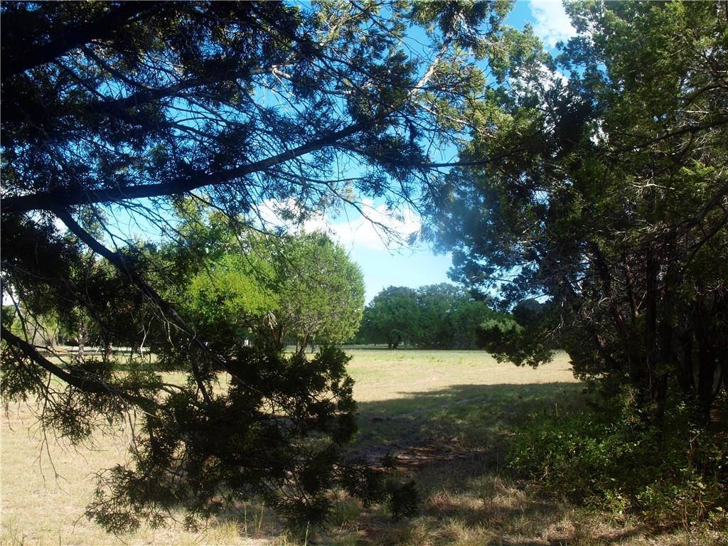 Closed | 149 Little Gabriel River Drive Liberty Hill, TX 78642 2