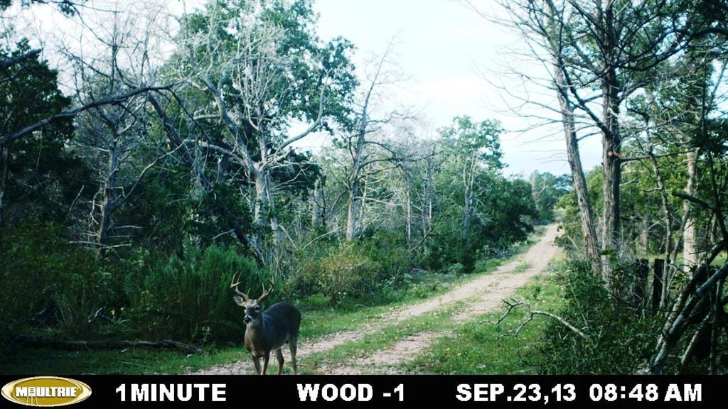 #mattmazacrealtor, #fayettecountyland, #coloradocountyland | 2555 Jurecka Road Fayetteville, Texas 78940 13