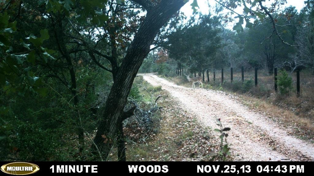 #mattmazacrealtor, #fayettecountyland, #coloradocountyland | 2555 Jurecka Road Fayetteville, Texas 78940 14