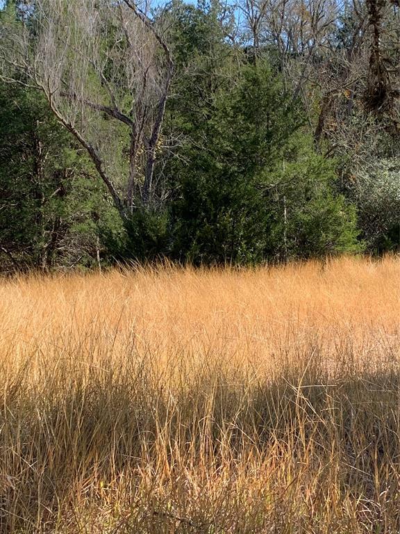 #mattmazacrealtor, #fayettecountyland, #coloradocountyland | 2555 Jurecka Road Fayetteville, Texas 78940 6