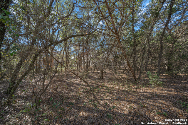 Off Market | 10618 LARCH GROVE CT Helotes, TX 78023 33