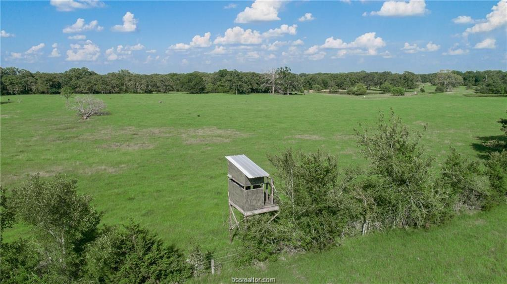 Active | 7779 County Road 461 Normangee, TX 77871 4
