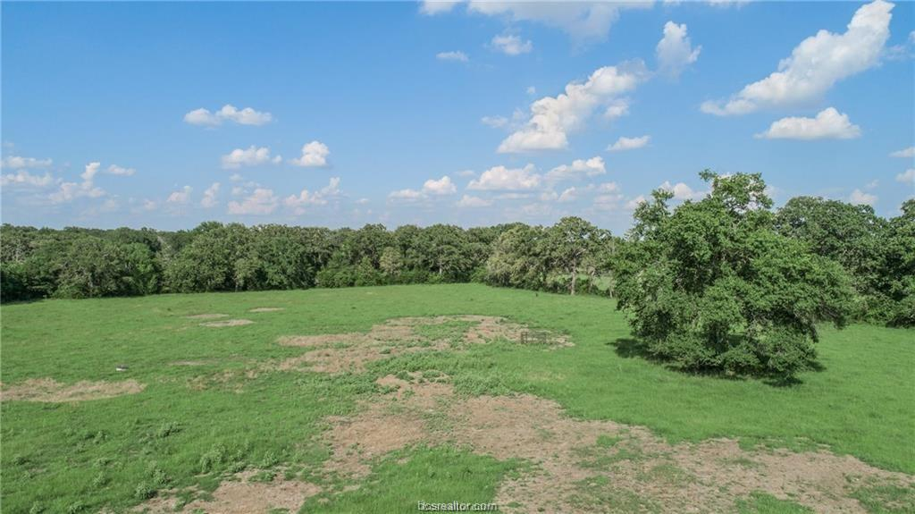 Active | 7779 County Road 461 Normangee, TX 77871 6