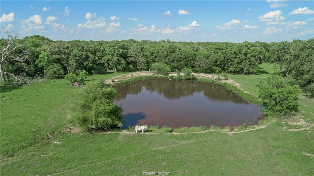 Active | 7779 County Road 461 Normangee, TX 77871 9