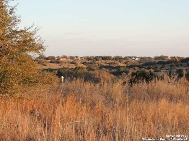 Active Option | 146 FINCH PL Spring Branch, TX 78070 4