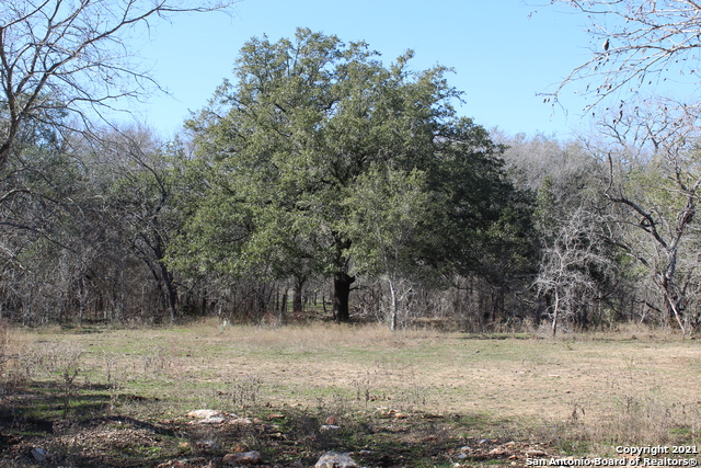 Pending   9787 Kirkner Rd San Antonio, TX 78263 2