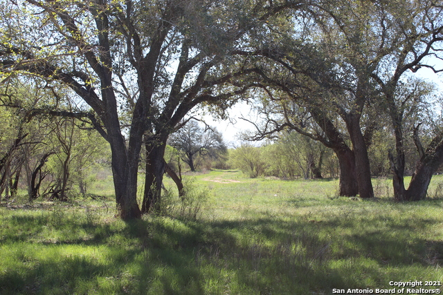 Off Market | 2088 County Road 2537 Moore, TX 78057 11