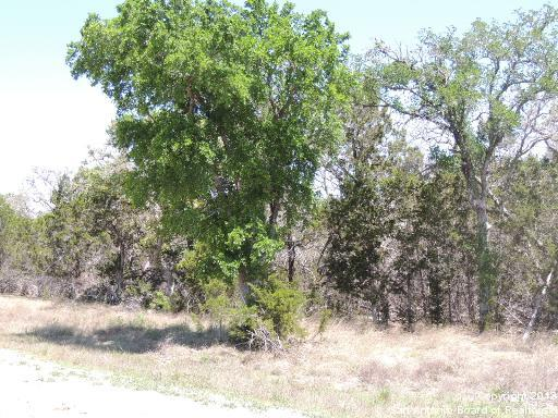 Pending | 3028 Buck Meadow Trail Spring Branch, TX 78070 2