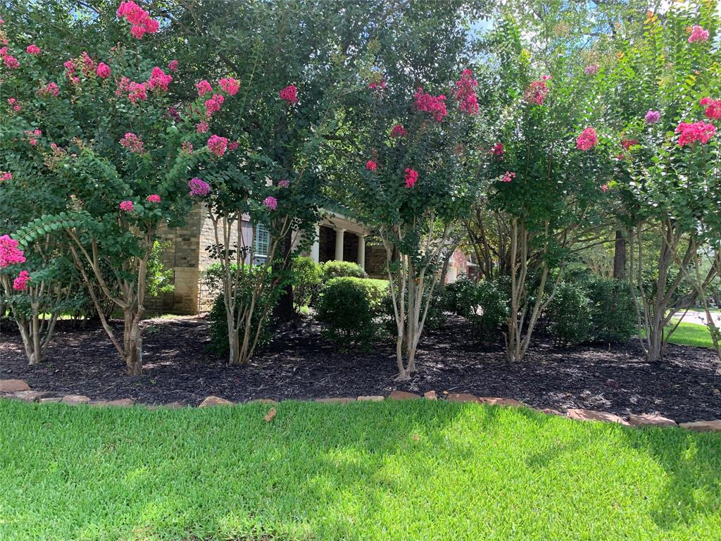 Off Market   106 Cezanne Woods The Woodlands, Texas 77382 3