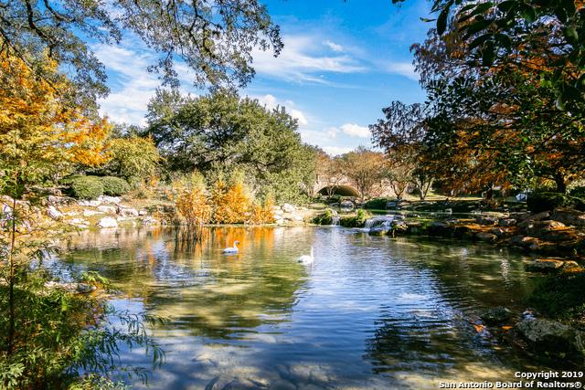 Pending | 22214 Zagato Ln San Antonio, TX 78257 3
