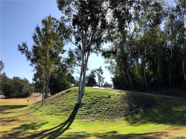 Pending   24301 Briones Drive Laguna Niguel, CA 92677 29
