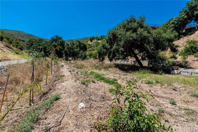 Active | 28532 Williams Canyon Road Silverado Canyon, CA 92676 22