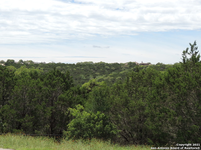 Active Option | 316 HIGH POINT CIRCLE Spring Branch, TX 78070 8