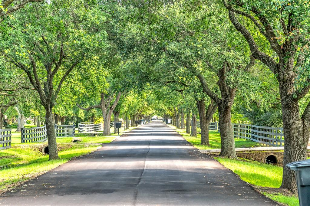 Off Market | 39 E Kitty Hawk Street Richmond, Texas 77406 5