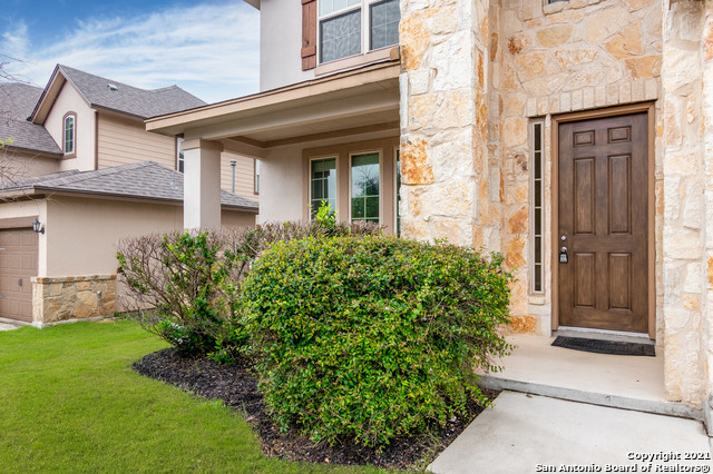 Active Option | 3810 Ox-Eye Daisy San Antonio, TX 78261 3