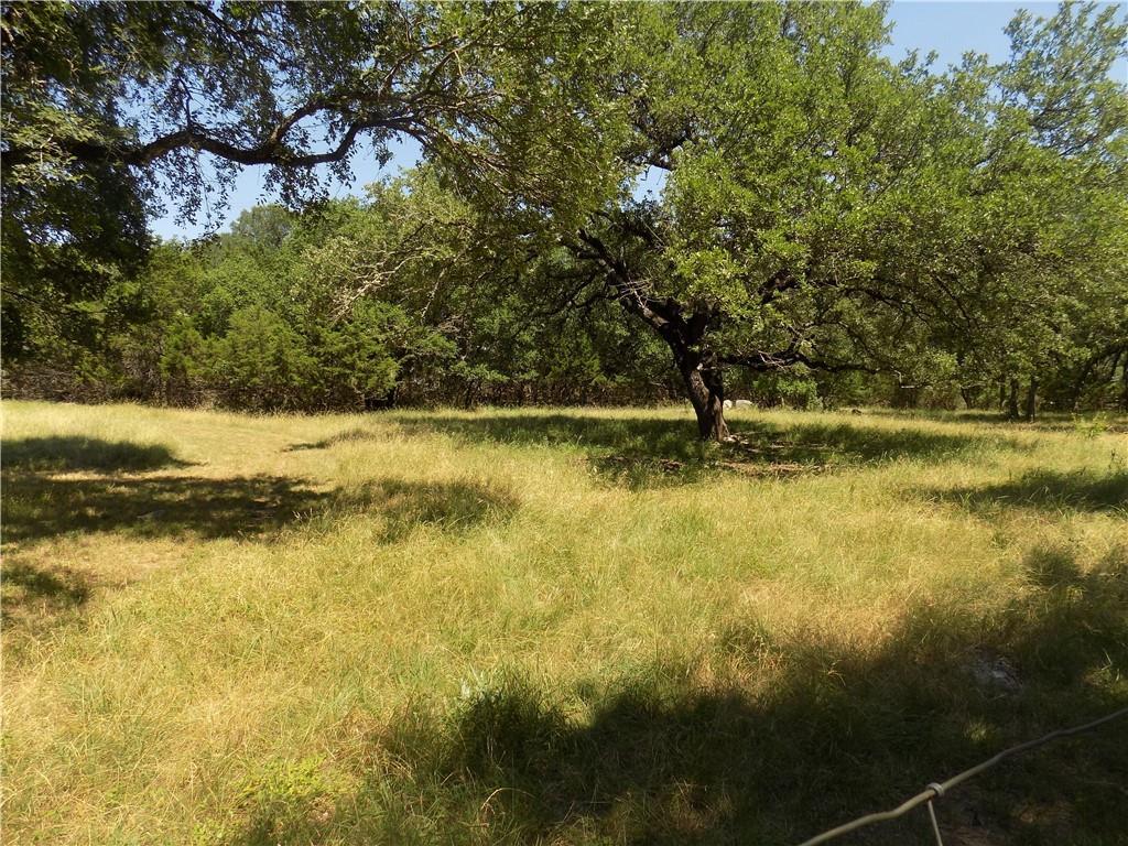 Active | 811 Golden Oaks Road Georgetown, TX 78628 23
