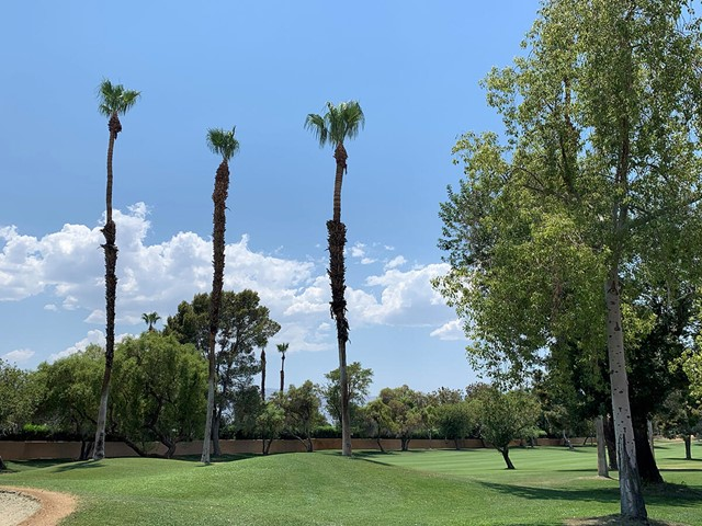 Closed | 77739 Woodhaven Drive S Palm Desert, CA 92211 0