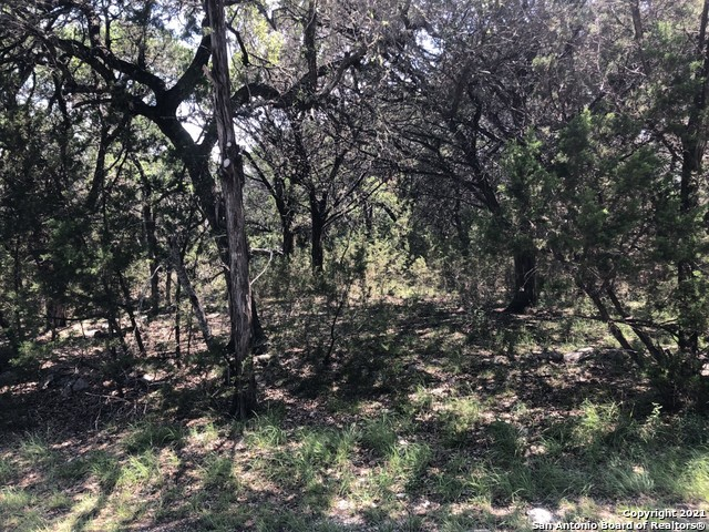 Active Option | 446 W Overlook Dr Canyon Lake, TX 78133 0