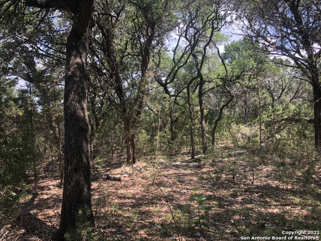 Active Option | 446 W Overlook Dr Canyon Lake, TX 78133 2