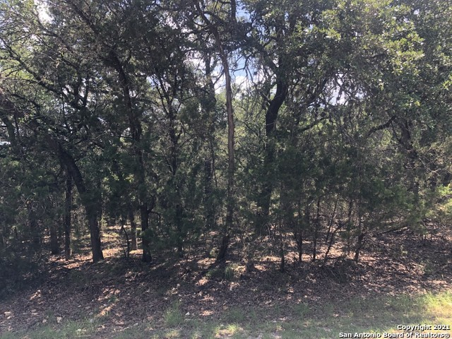 Active Option | 446 W Overlook Dr Canyon Lake, TX 78133 6