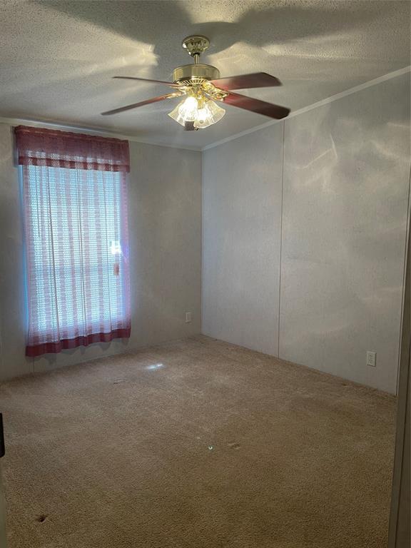 Active | 556 County Road 3520 Broaddus, Texas 75929 10